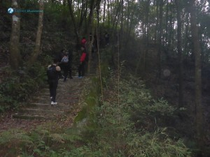 48. Stairway to heven