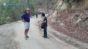 29. Jungle Road