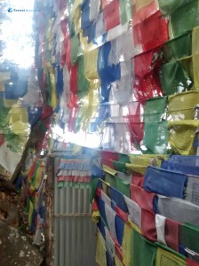 36. Wall of flags