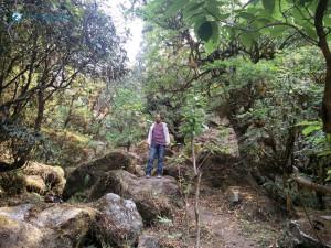 4. Dinesh Amatya blending in the Green Clean Paradise Nepal