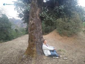 5. Dinesh Meditating Under The Tree