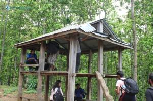 14. Tree house