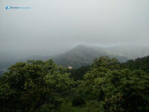 16. Landscape Pachkhal