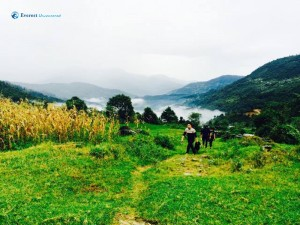 26. Hike Trails