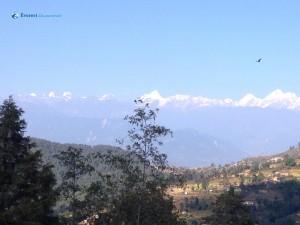 32. Himalaya