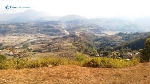 41. Landscape
