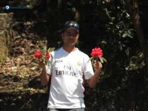 32) Rhododendron Boy
