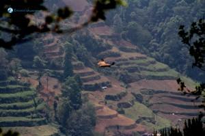 3) Terrace Farming