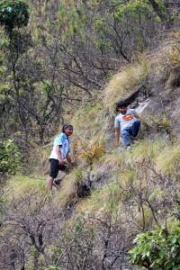 31) Steep Hill