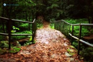 2. Bridgeway to Heaven