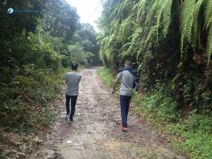 15. Lets walk