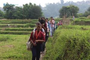 5. Students walk through a grassy field.