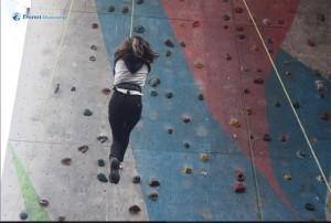 5. Free fall
