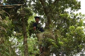 11. Nepali Tarzan