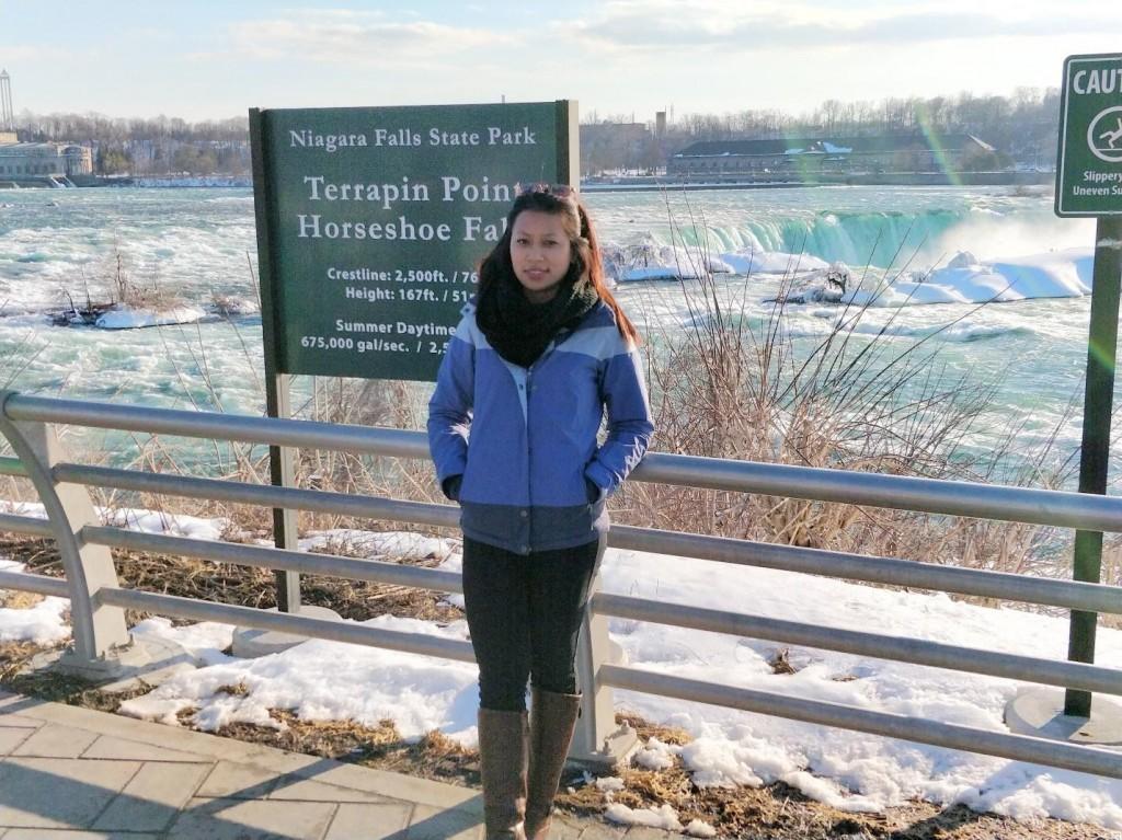 Niagara Falls State Park, Niagara