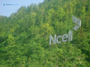 30. necll jungle