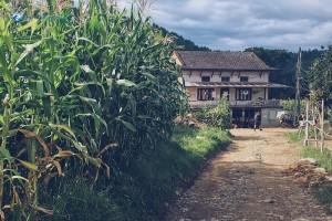 21. Village House