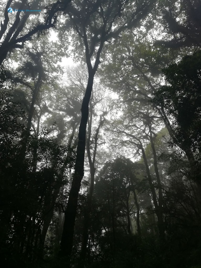 2. Nature