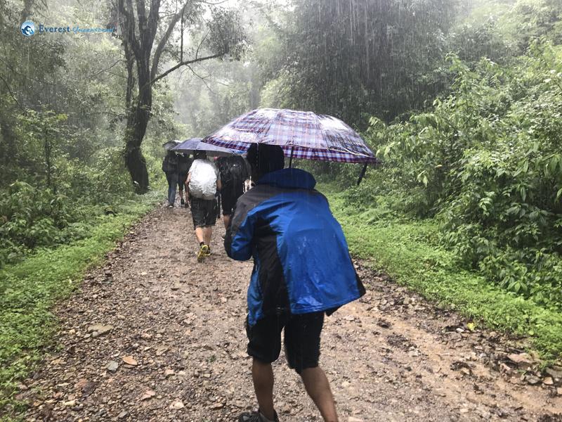 2. Rain Is Grace