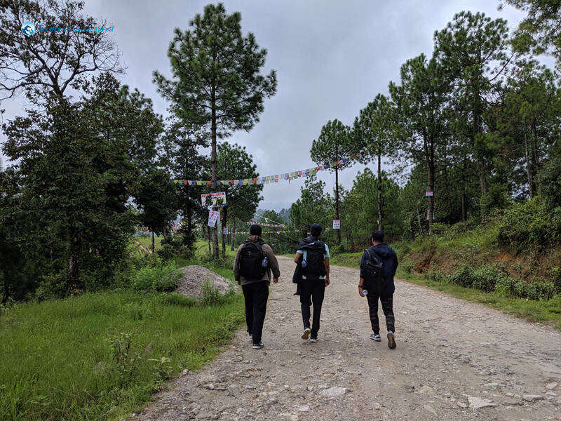 4 Let S Walk