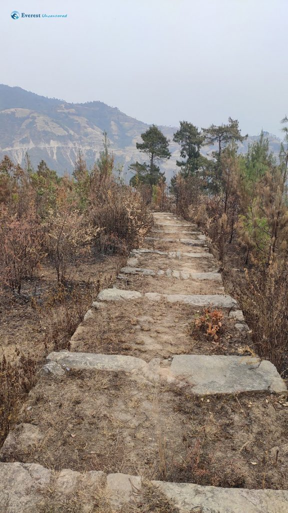 18. Wider Steps Meant A Slower Ascent